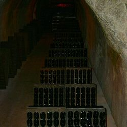 Vintage and Non-Vintage Cuvee Champagnes