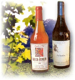 Jura rose and red wine tasting tips and food matching tips