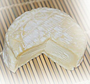 Saint Marcellin, French Goat Cheese
